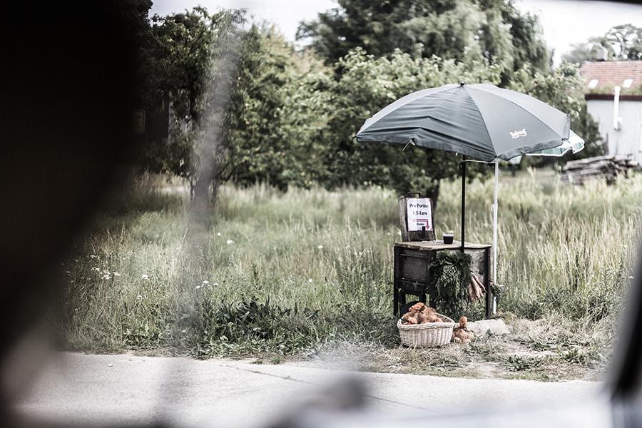 Böckenberg_08_2015_163 als Smartobjekt-1