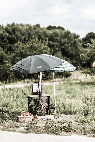 Böckenberg_08_2015_164 als Smartobjekt-1