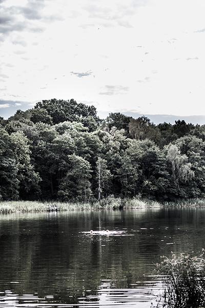 Böckenberg_08_2015_167 als Smartobjekt-1